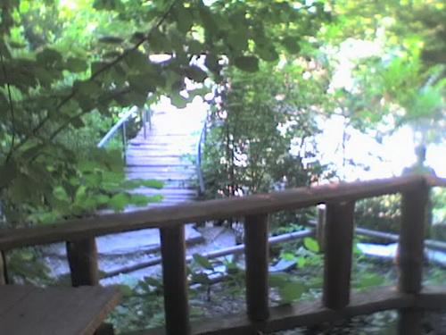 Вид на реку Жане с кафешки