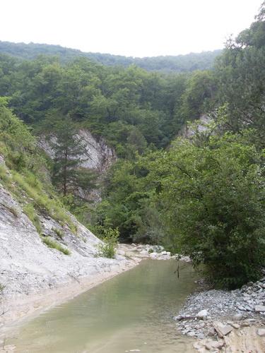 Русло реки Жане