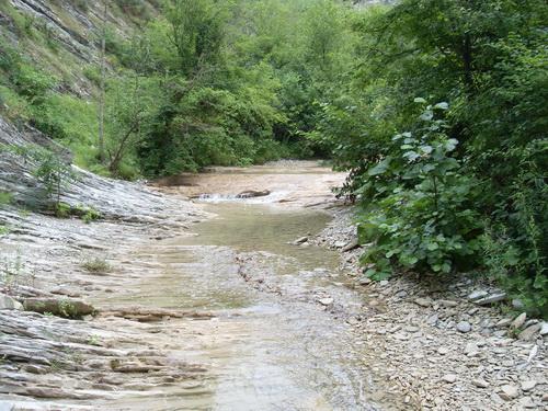 Вот такая она - река Жане летом