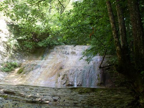 Водопад в тени деревьев