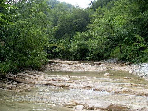 Река Жане!
