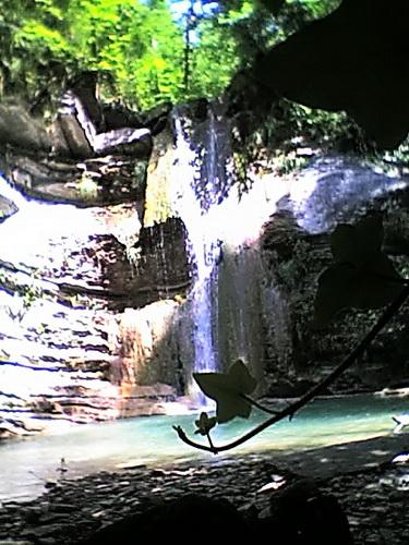 Водопад где мы встретили собаку