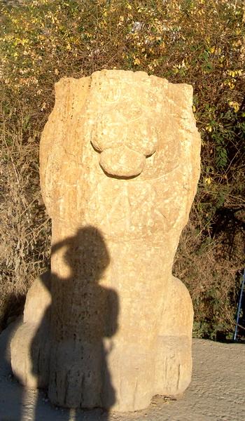 Лев и моя тень