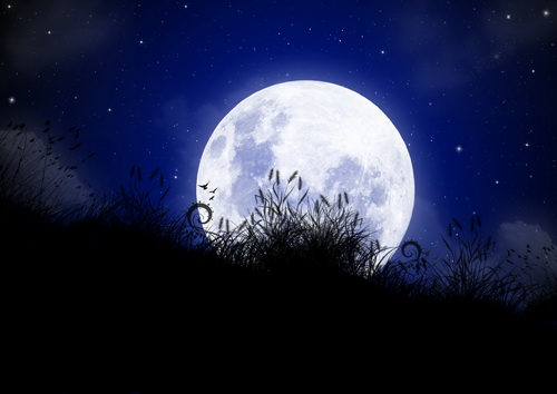 Луна за травой